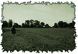 Burrs Field